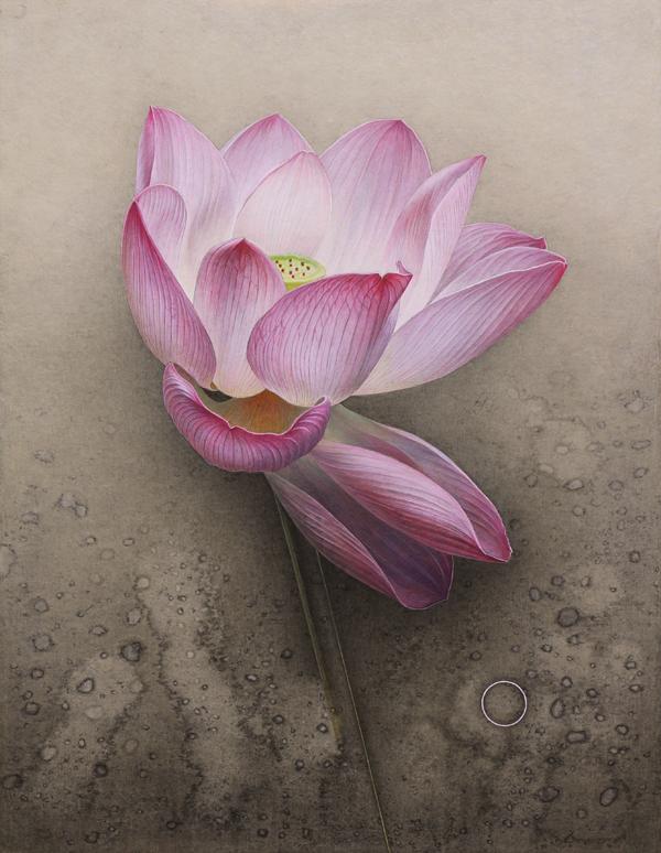 奉納作品「Lotus #2」