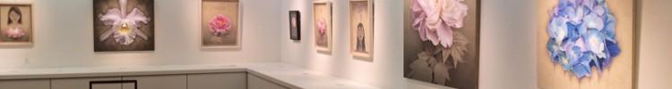 日本橋三越本店美術サロン個展終了